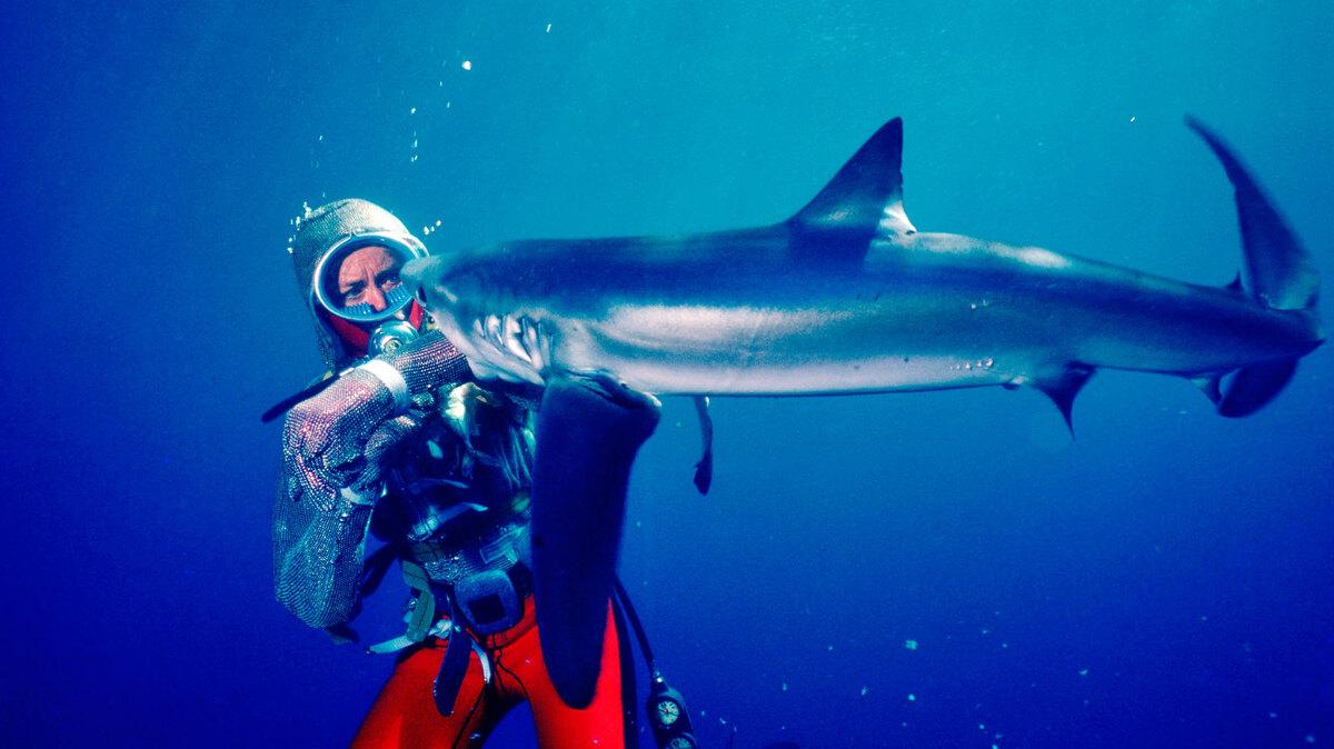 Disney+ выпустил трейлер документального фильма «Игры с акулами»
