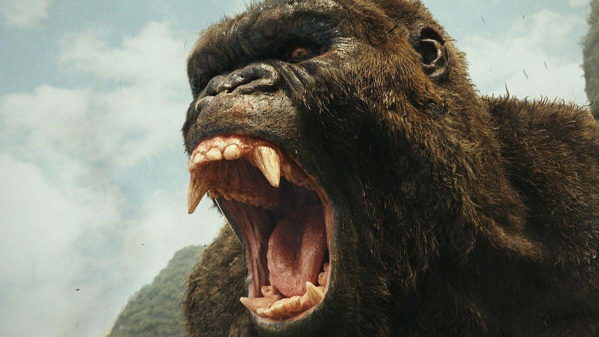 Junkie XL представил одну из главных музыкальных тем «Годзиллы против Конга»
