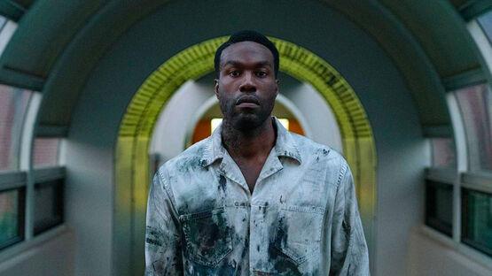 Режиссер хоррора «Кэндимен»: «Хочу, чтобы мой фильм залез зрителям под кожу»