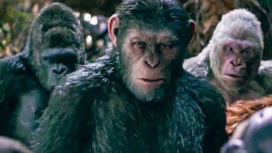 Ребут «Планеты обезьян» от Disney не будет продолжением трилогии Мэтта Ривза